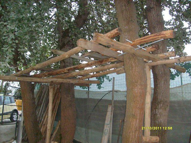 Casetta sull 39 albero al mare for Costruire una casa sulla spiaggia su palafitte